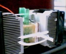 refrigeratore fai da te-carmelo fruciano home page-sezione acquari - Plexiglass Per Acquario Fai Da Te